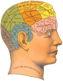 an introduction to phrenology I seriously doubt that anybody believes that phrenology has any claim to a meritable discipline it was really no more than a fad of long ago, and fads come and go.